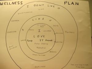 My wellness plan